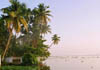 A morning view on the backwaters.