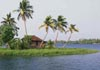 An island on the backwaters.